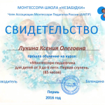 Лукина Сертификат Монтессори 2017