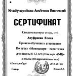 Сертификат Ануфриева2