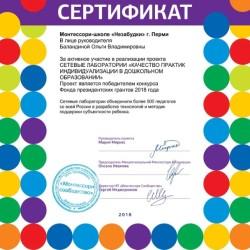 Сертификат Сетевые лаборатории Монтессори